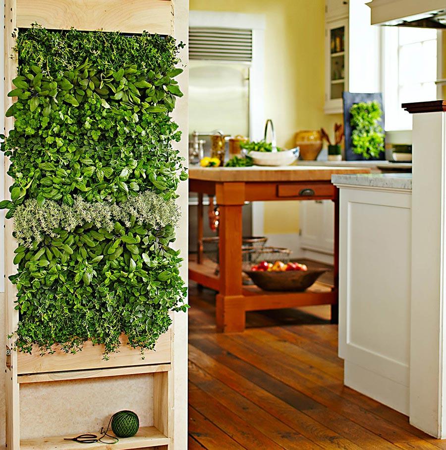 Нетрадиционни идеи за декорация на стена-жива стена в кухнята