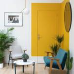 Акцент върху врата, постигнат с 2 цвята боя