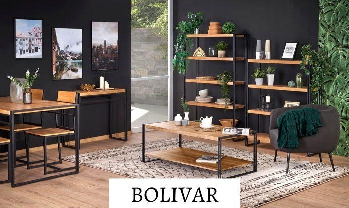 Модули Bolivar
