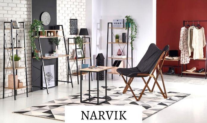 Модули Narvik